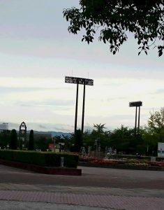 今朝の長居公園!